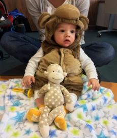 little-monkey-littler-monkey