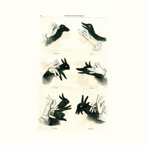 A diagram on how to create shadow puppets that look like a rabbit and a wolf.